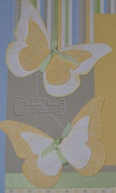Butterflycu