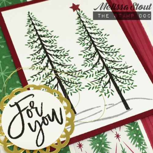 holidaythoughtfulbranchescloseup