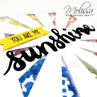 sunshineshakercloseup