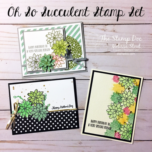 Oh So Succulent Cards